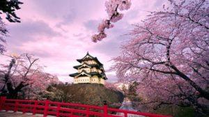 Traveling Ke Jepang? 3 Fakta Unik Berikut Wajib Anda Ketahui!!